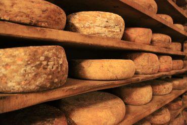 fromage en restauration