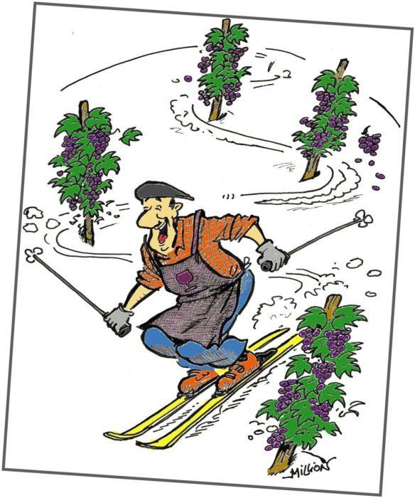La 13e édition de Bacchus à la neige