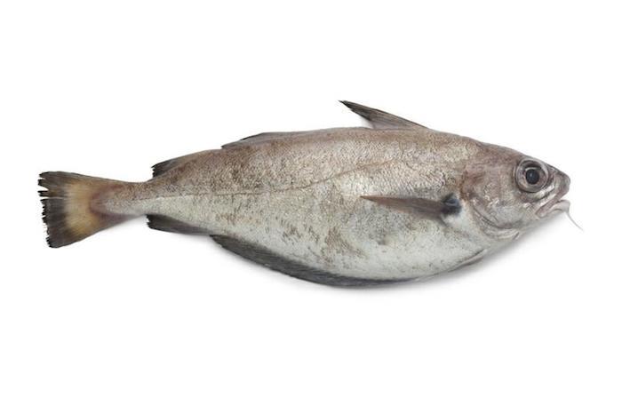 Les viandes, poissons et fruits de mer