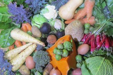 Les fruits et légumes du mois de janvier