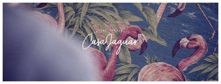 Casa Jaguar Lyon