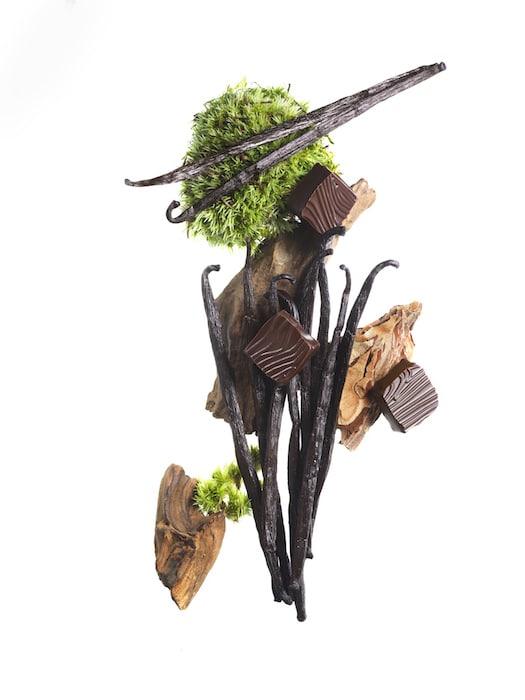 chocolat délicieux vanille et bois