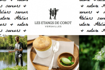 Atelier saveurs et nature aux étangs de Corot