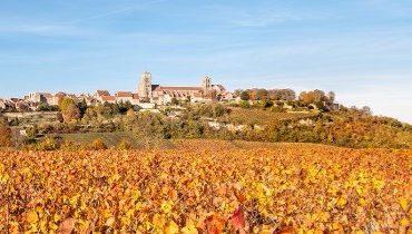 2 nouvelles AOC pour le vin