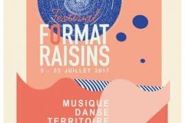 Festival Format Raisins