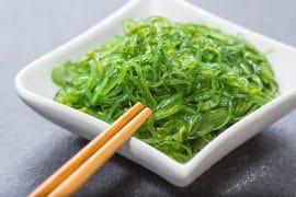 Les algues comestibles
