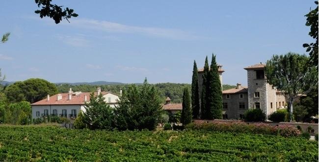 Initiations aux vendanges au Château de Berne