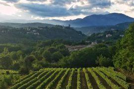 Journées Européennes du Patrimoine des Vignerons Ardéchois