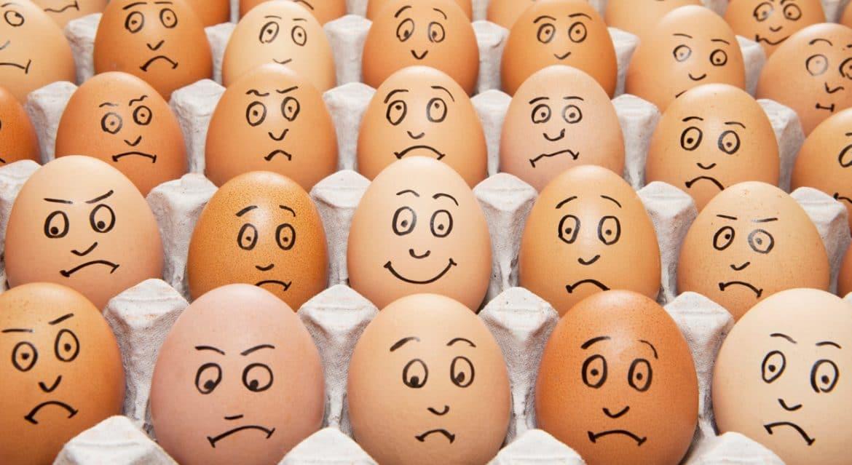 Quels œufs choisir