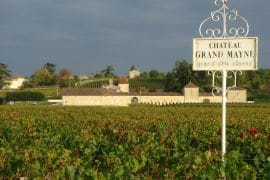 Filia de Grand Mayne 2014