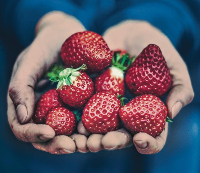 Poignée de fraises