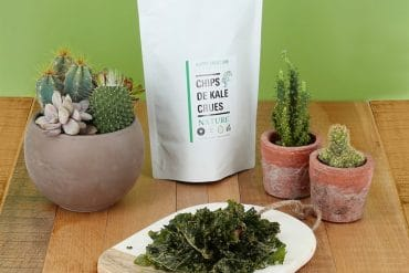 Les chips de Kale nature