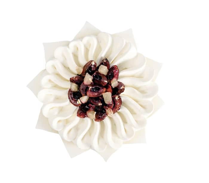 Camellia de Pouchkine
