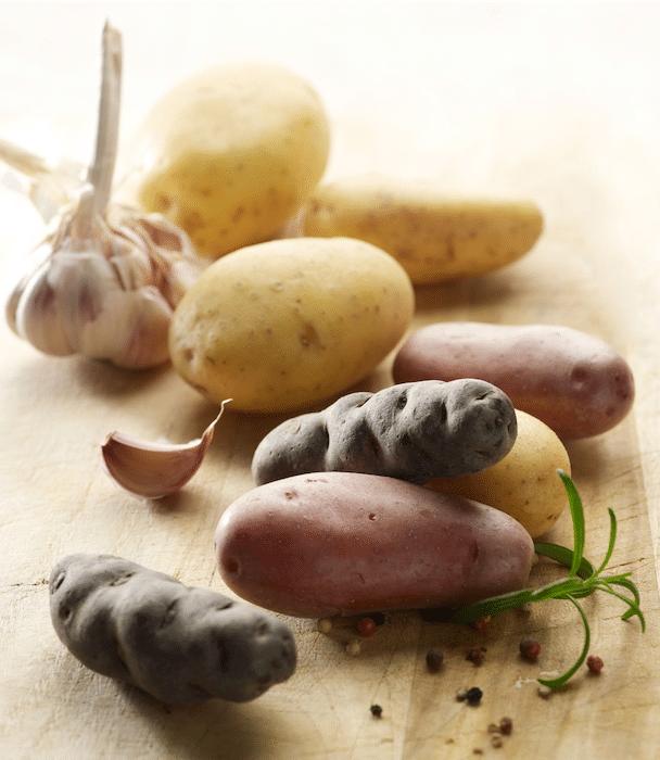 les variétés de pomme de terre