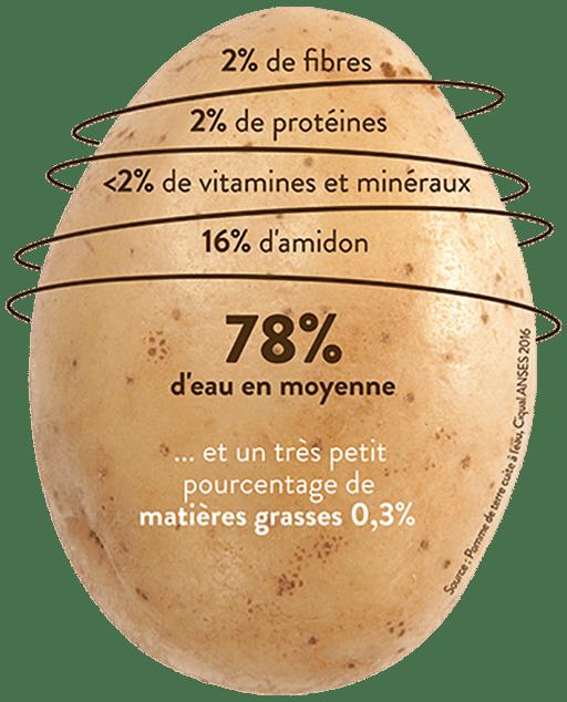 pomme de terre légume ou féculent