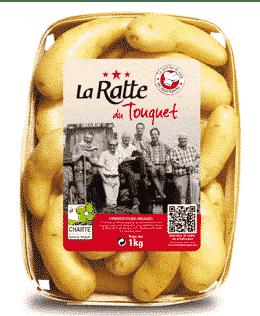 Ratte du Touquet