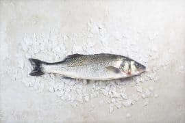 Fish & Shop