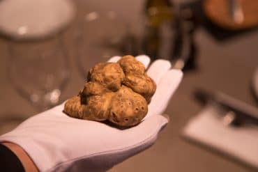 La truffe blanche