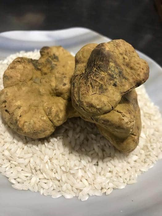 la truffe blanche au Mas Bottero