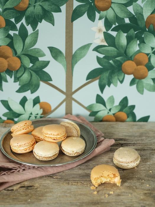 macarons éphémères Dalloyau