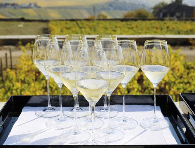 formation champagne en ligne