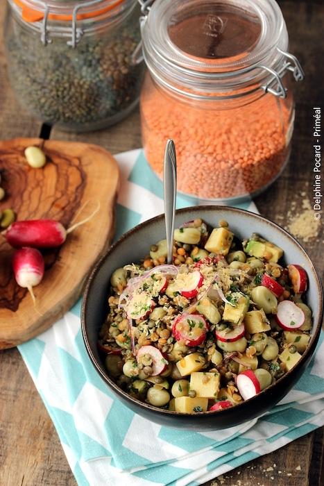 recette de Salade de lentilles et fèves aux radis