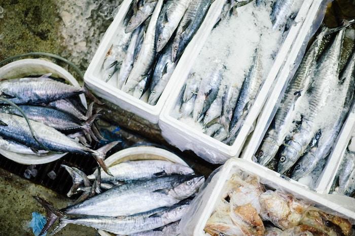 Quels sont les poissons préférés des français