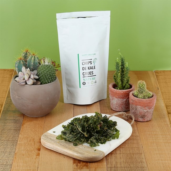 Les chips de Kale nature