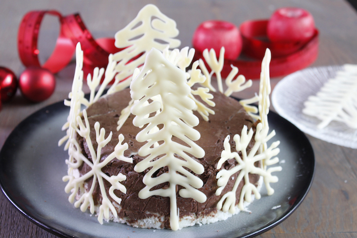 Gâteau glacé chocolat Noir