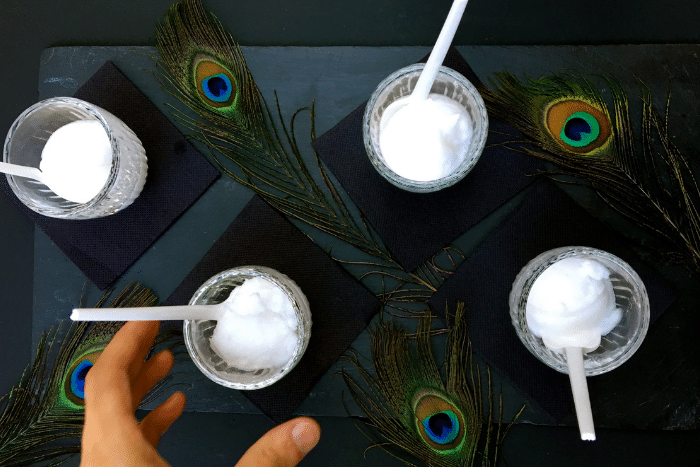 Sorbets cocktailisés