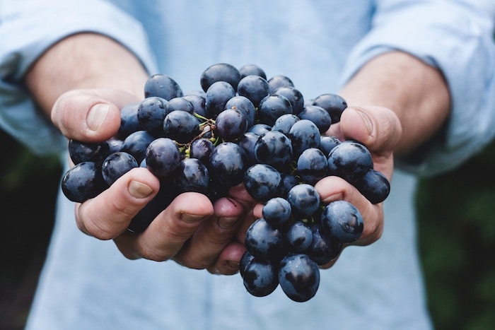 Les vins favoris d'Eric Jambon