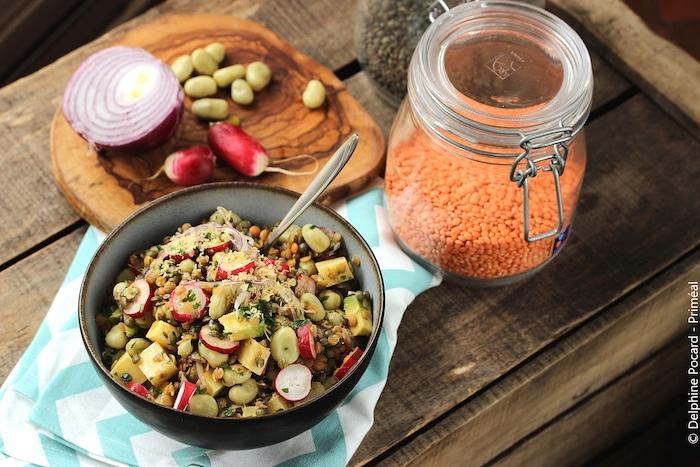 Salade de lentilles et fèves aux radis
