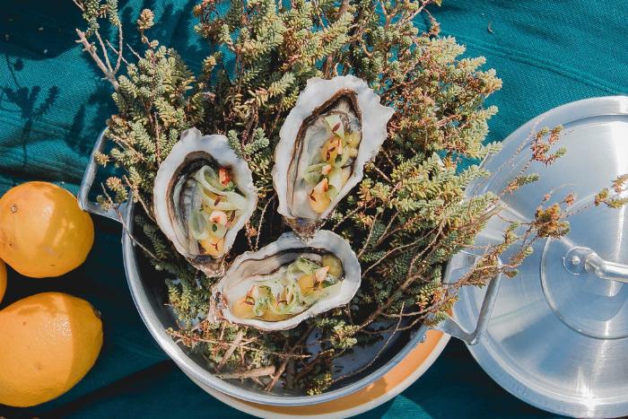 Huîtres citronnées et concombre