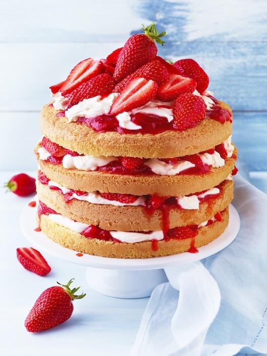 Fraisier express aux fraises