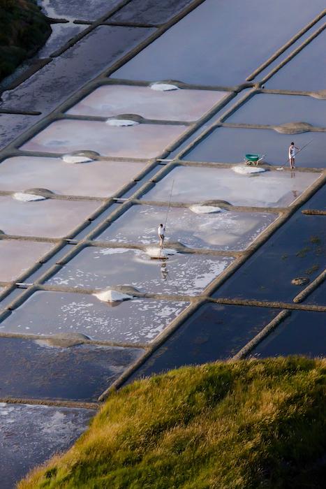 la récolte de la fleur de sel Le Guérandais